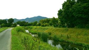 川沿いポタリング
