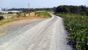 川原の砂利道2