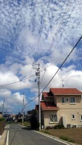 ポタリング 青い空