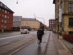 NHK「世界ふれあい街歩き」に見る自転車